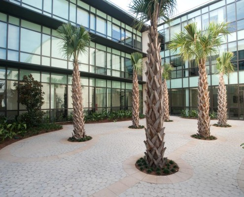 Loyola Law Clinic New Orleans Courtyard | DonahueFavret Contractors, Inc. | Louisiana Commercial General Contractors